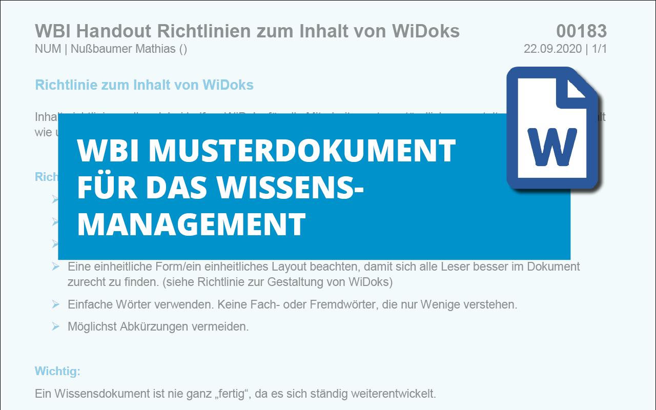 WBI-Handout-Richtlinien-zum-Inhalt-von-WiDoks-md