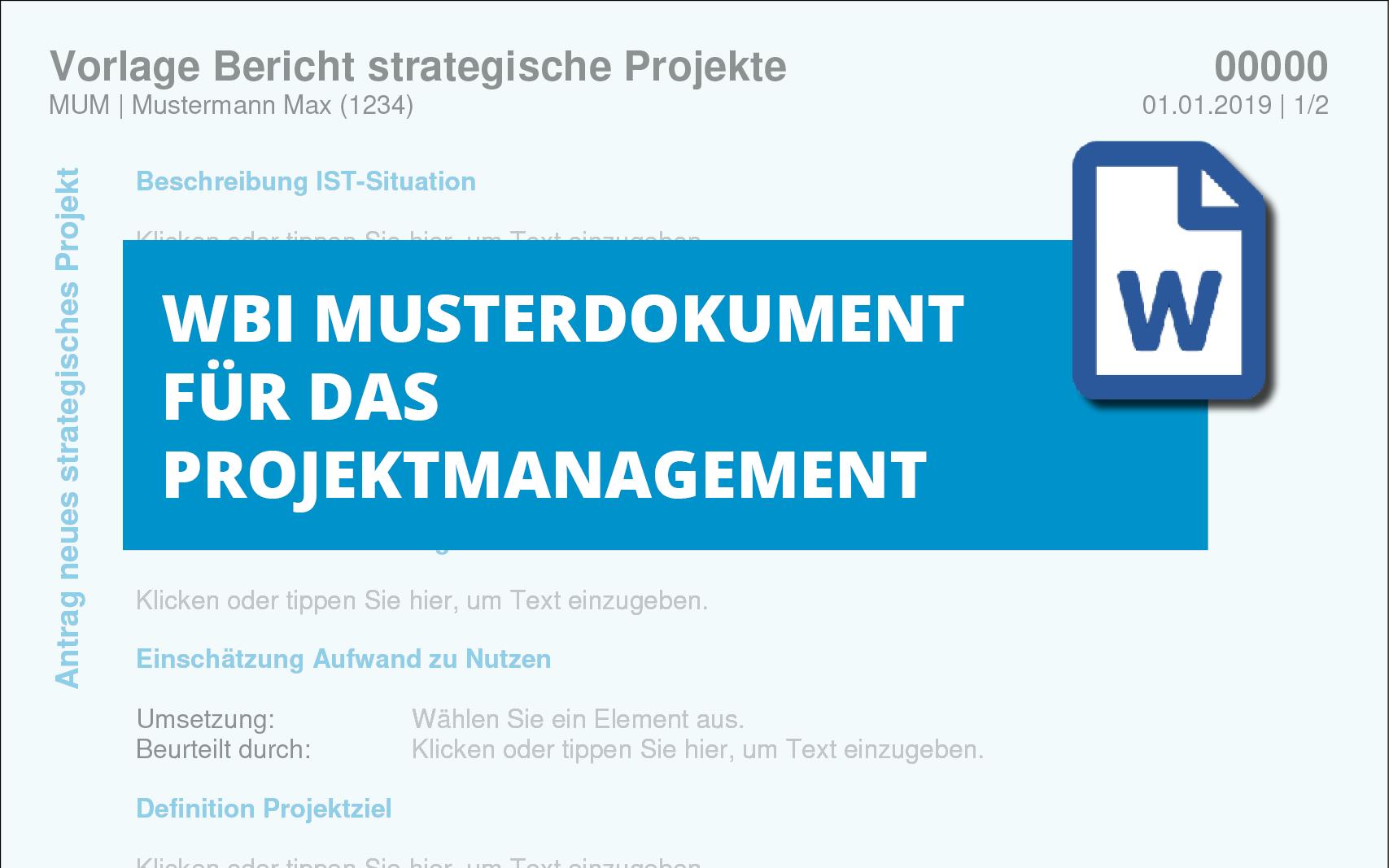 vorlage-bericht-strategische-projekte