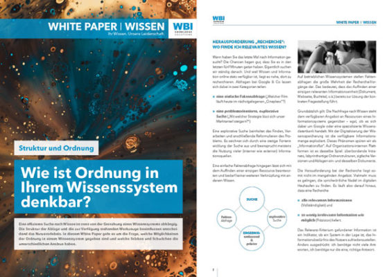 WBI-White-Paper-Ordung-im-WMS-2-seitig